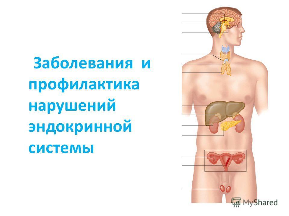 Заболевания и профилактика нарушений эндокринной системы