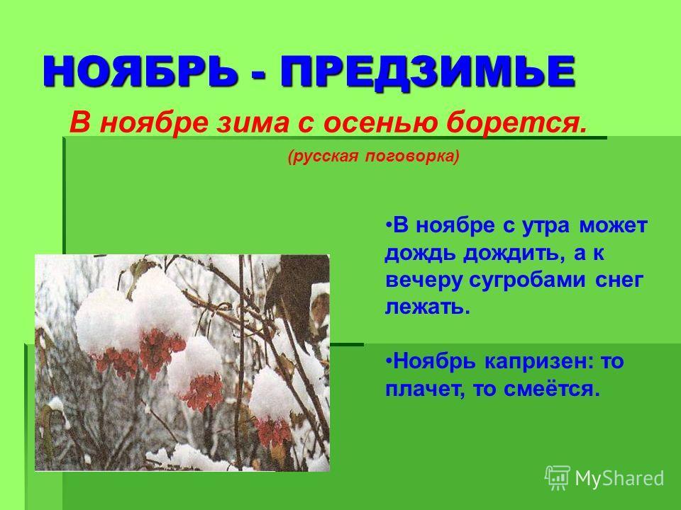НОЯБРЬ - ПРЕДЗИМЬЕ В ноябре зима с осенью борется. (русская поговорка) В ноябре с утра может дождь дождить, а к вечеру сугробами снег лежать. Ноябрь капризен: то плачет, то смеётся.
