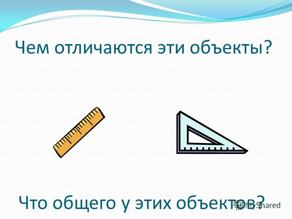 Чем отличаются эти объекты? Что общего у этих объектов?