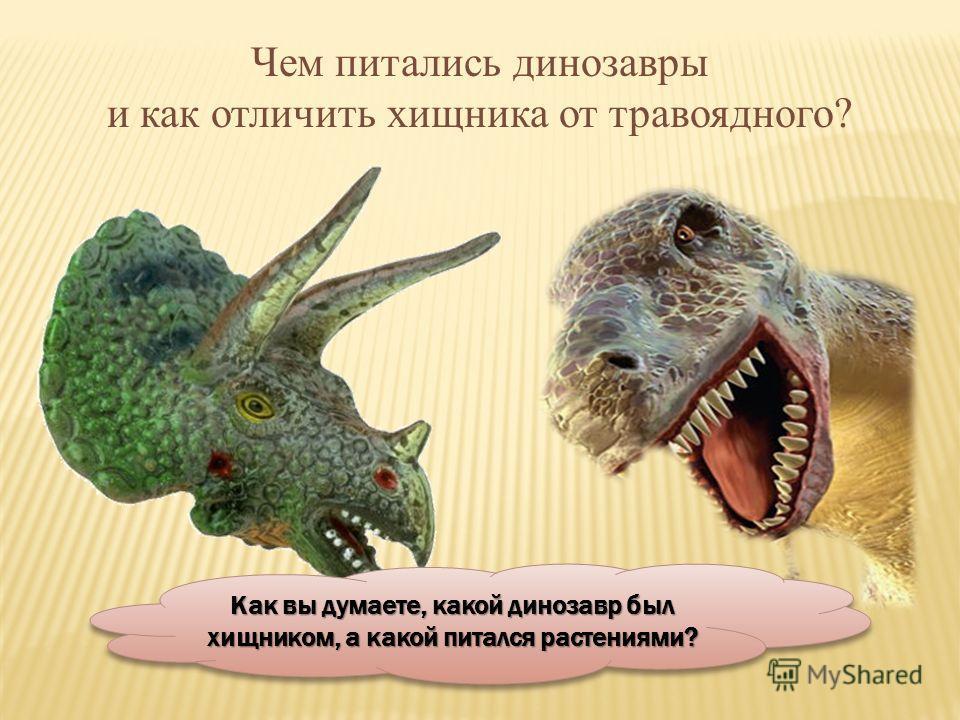 Чем питались динозавры и как отличить хищника от травоядного? Как вы думаете, какой динозавр был хищником, а какой питался растениями?