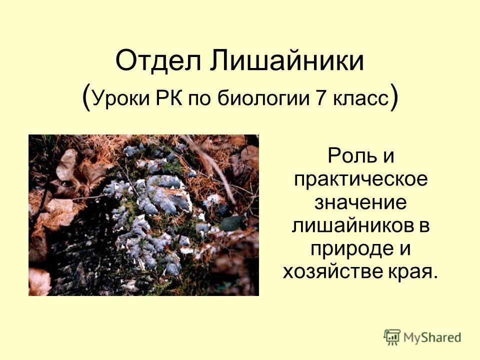 Отдел Лишайники ( Уроки РК по биологии 7 класс ) Роль и практическое значение лишайников в природе и хозяйстве края.