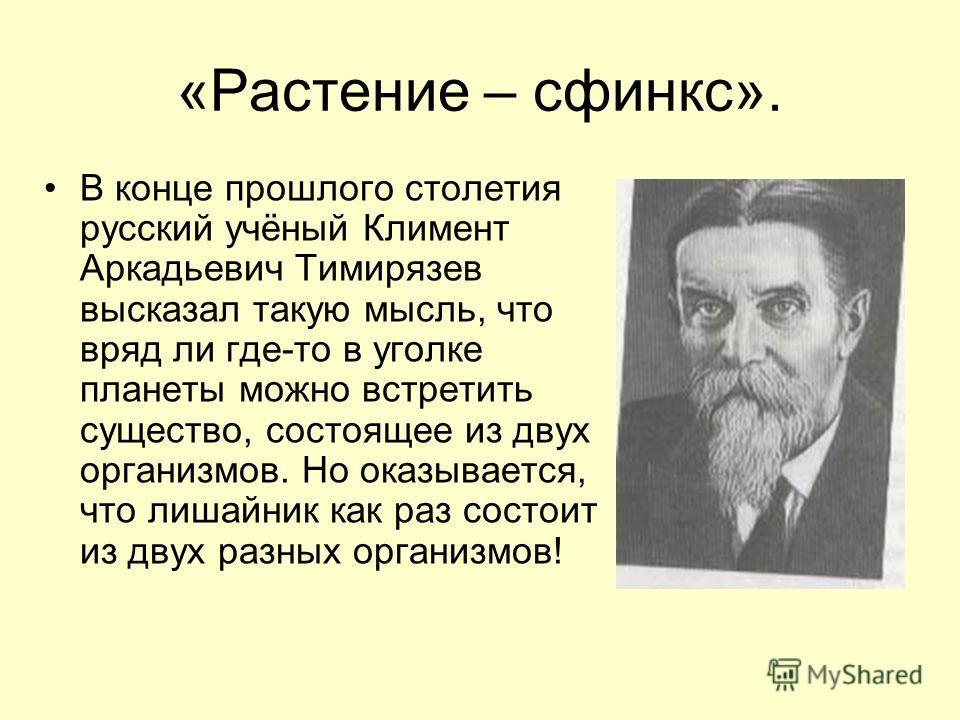 «Растение – сфинкс». В конце прошлого столетия русский учёный Климент Аркадьевич Тимирязев высказал такую мысль, что вряд ли где-то в уголке планеты можно встретить существо, состоящее из двух организмов. Но оказывается, что лишайник как раз состоит