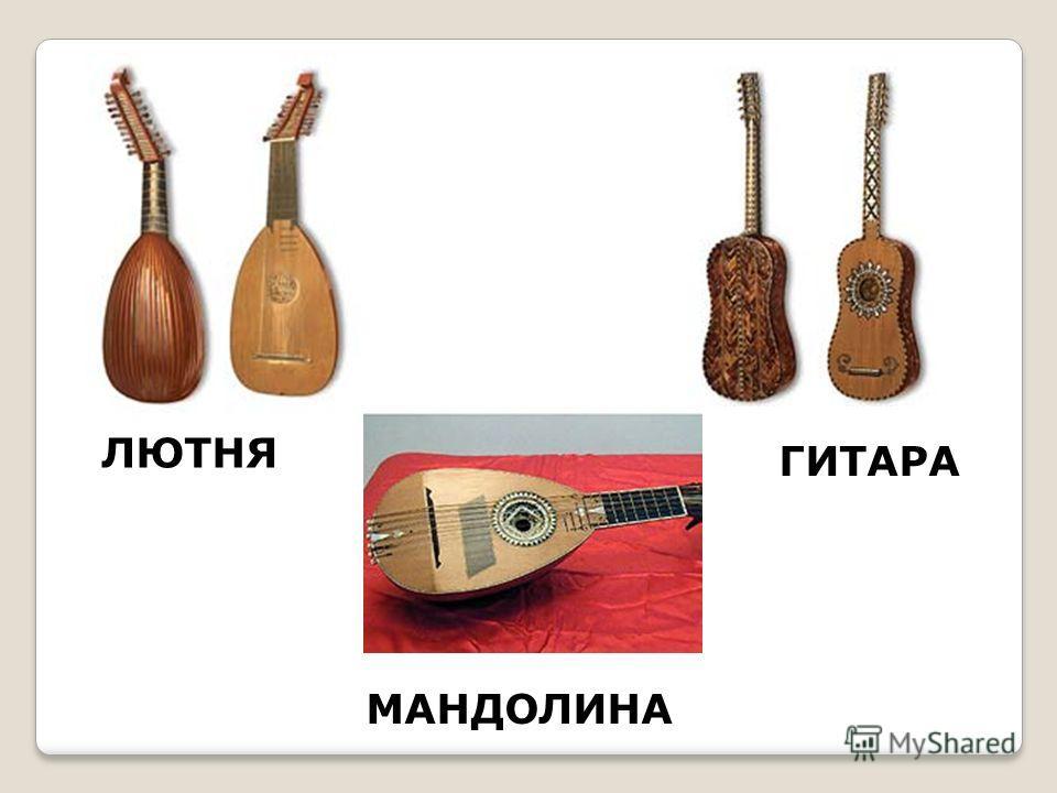ЛЮТНЯ ГИТАРА МАНДОЛИНА