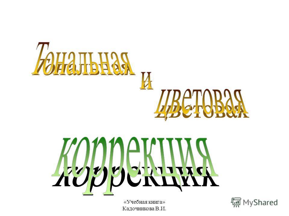 «Учебная книга» Кадочникова В.И.