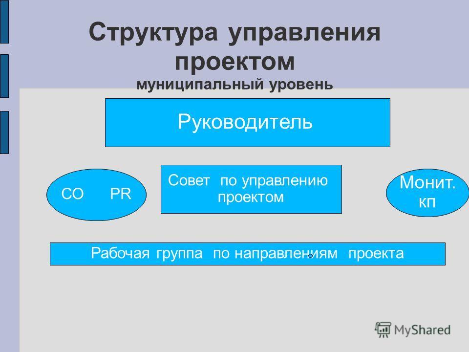 Структура управления проектом муниципальный уровень Руководитель Совет по управлению проектом Рабочая группа по направлениям проекта СО PR Монит. кп