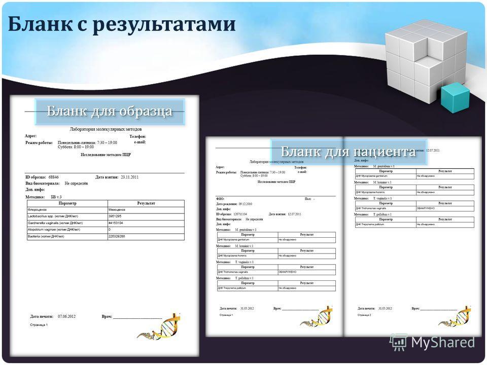 Бланк с результатами Бланк для образца Бланк для пациента