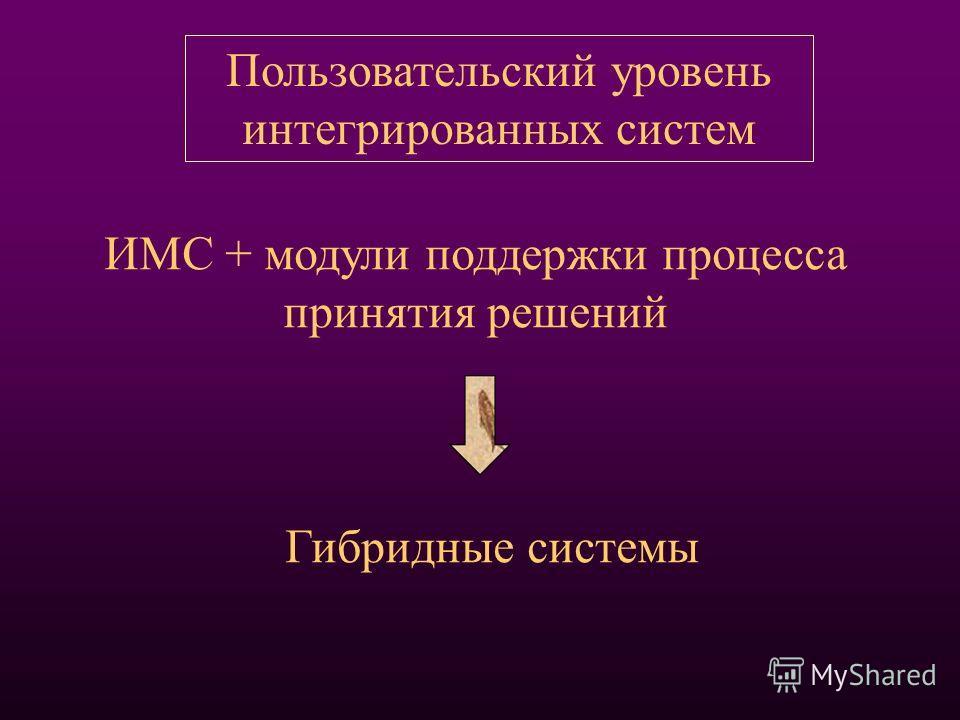 ИМС + модули поддержки процесса принятия решений Пользовательский уровень интегрированных систем Гибридные системы