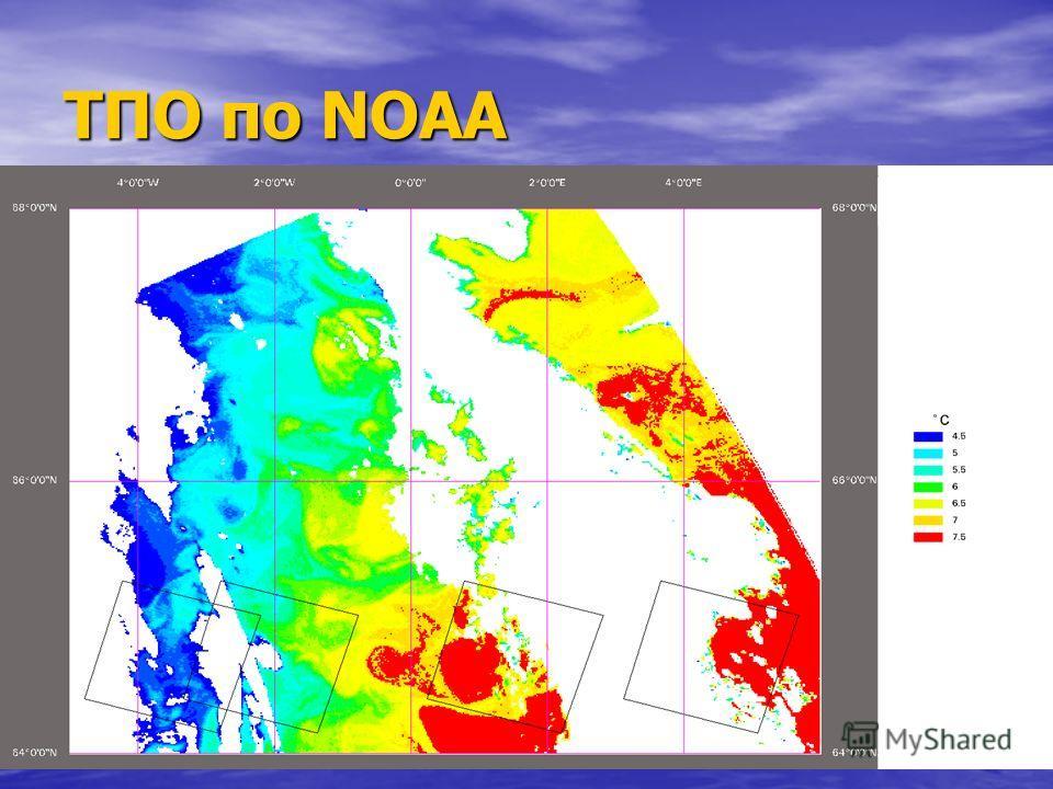 ТПО по NOAA