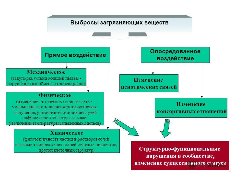 Последствия загрязнения природной среды тяжелыми металлами Т.В.Черненькова