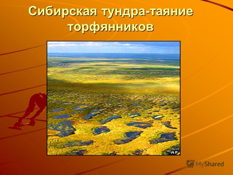 Сибирская тундра-таяние торфянников