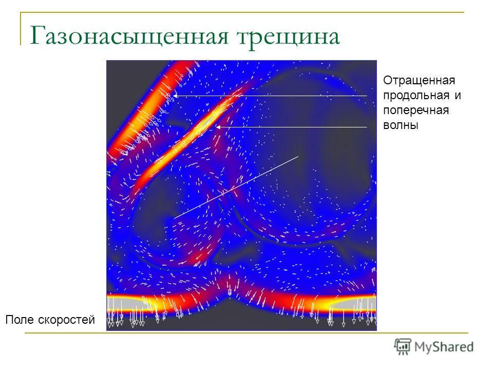 Газонасыщенная трещина Поле скоростей Отращенная продольная и поперечная волны