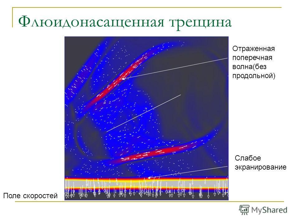 Поле скоростей Отраженная поперечная волна(без продольной) Слабое экранирование