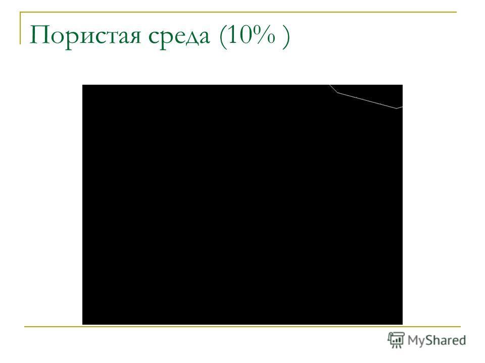 Пористая среда (10% )