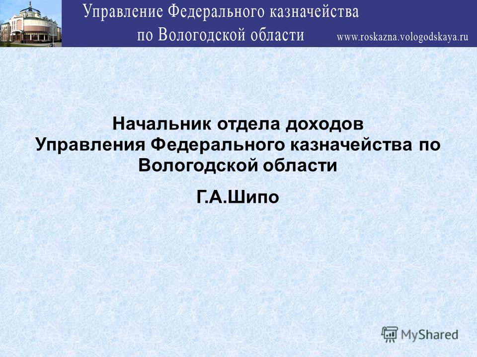Начальник отдела доходов Управления Федерального казначейства по Вологодской области Г.А.Шипо