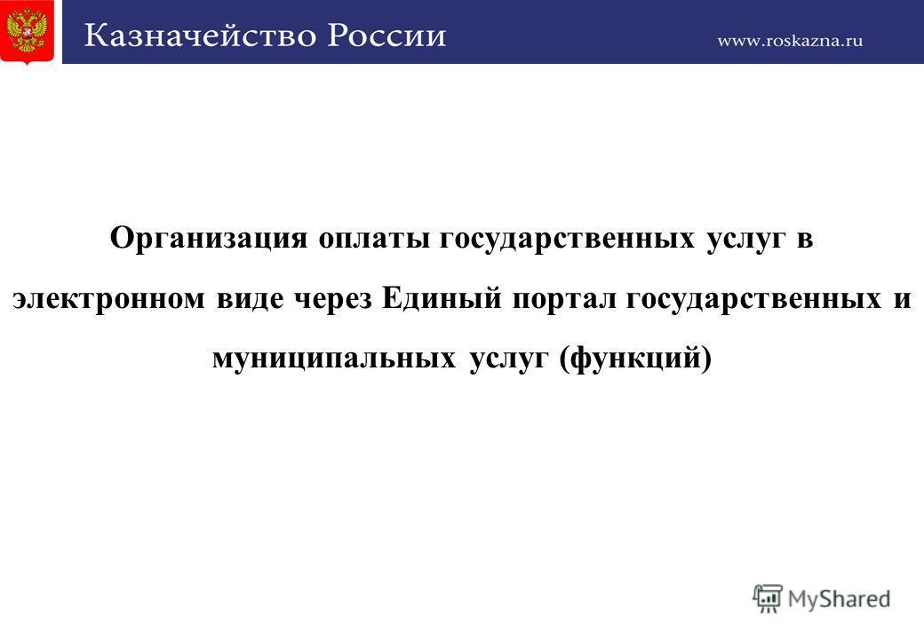 1 Организация оплаты государственных услуг в электронном виде через Единый портал государственных и муниципальных услуг (функций)