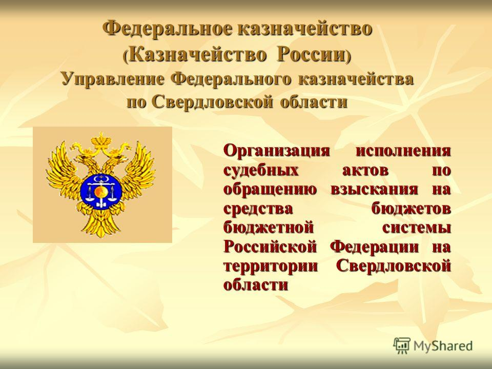 Федеральное казначейство ( Казначейство России ) Управление Федерального казначейства по Свердловской области Организация исполнения судебных актов по обращению взыскания на средства бюджетов бюджетной системы Российской Федерации на территории Сверд