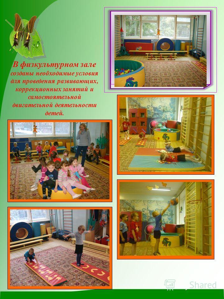 В физкультурном зале созданы необходимые условия для проведения развивающих, коррекционных занятий и самостоятельной двигательной деятельности детей.