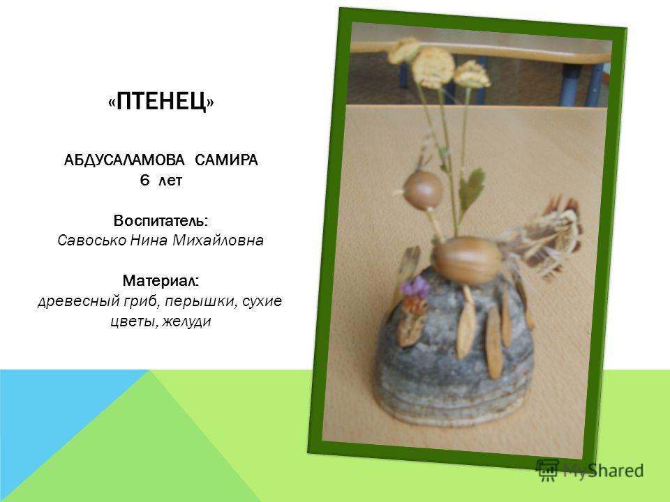 «ПТЕНЕЦ» АБДУСАЛАМОВА САМИРА 6 лет Воспитатель: Савосько Нина Михайловна Материал: древесный гриб, перышки, сухие цветы, желуди