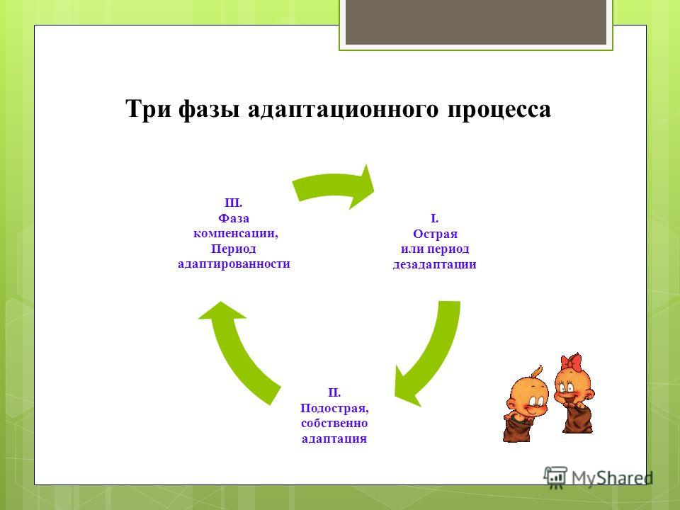 Три фазы адаптационного процесса I. Острая или период дезадаптации II. Подострая, собственно адаптация III. Фаза компенсации, Период адаптированности
