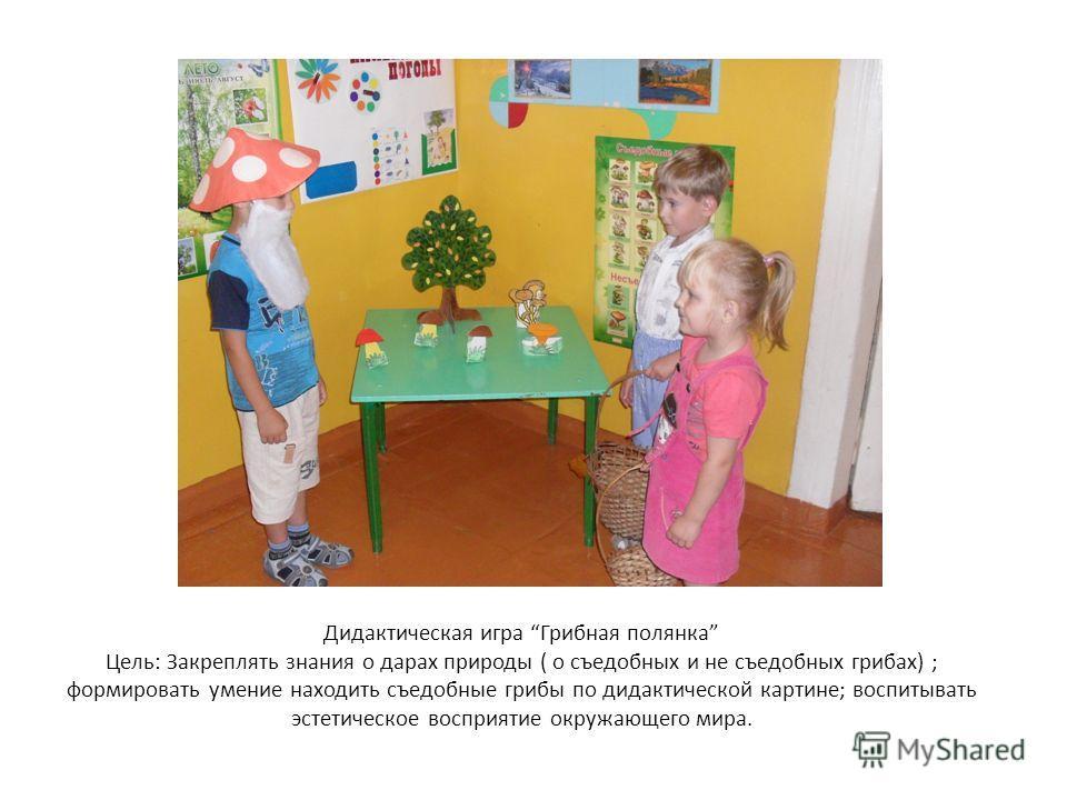 игры для знакомства с комнатными растениями