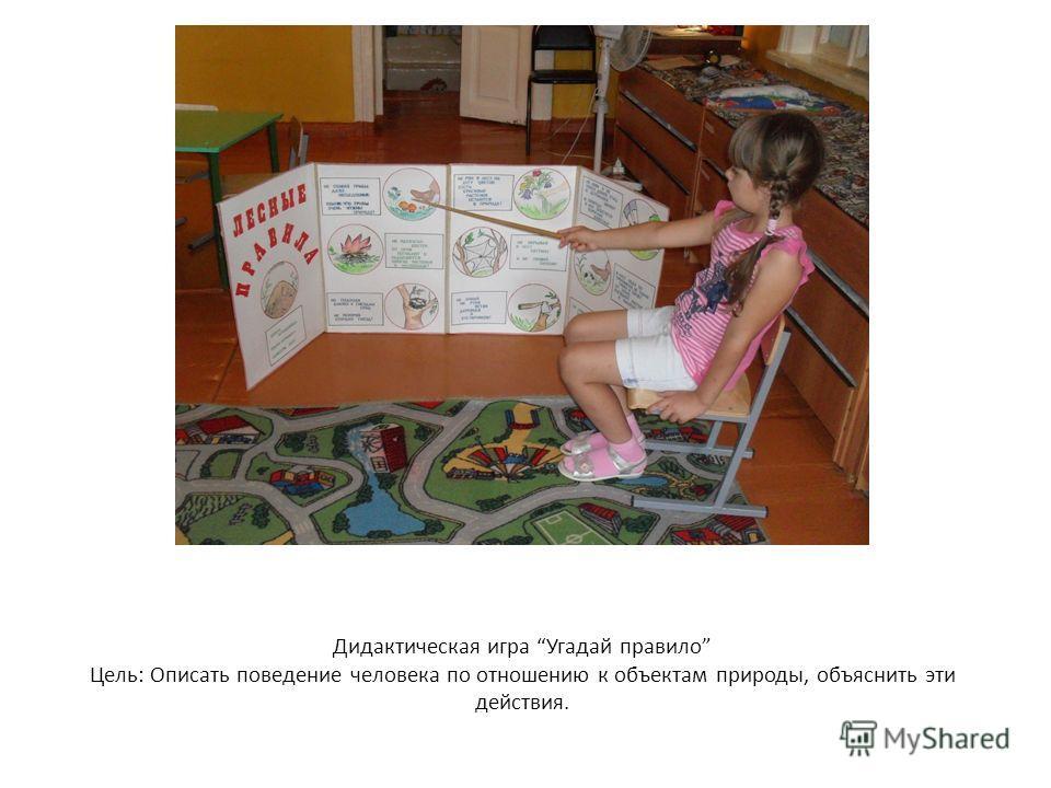Дидактическая игра Угадай правило Цель: Описать поведение человека по отношению к объектам природы, объяснить эти действия.
