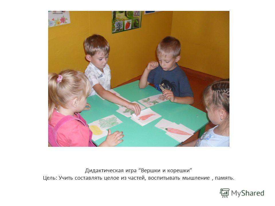 Дидактическая игра Вершки и корешки Цель: Учить составлять целое из частей, воспитывать мышление, память.