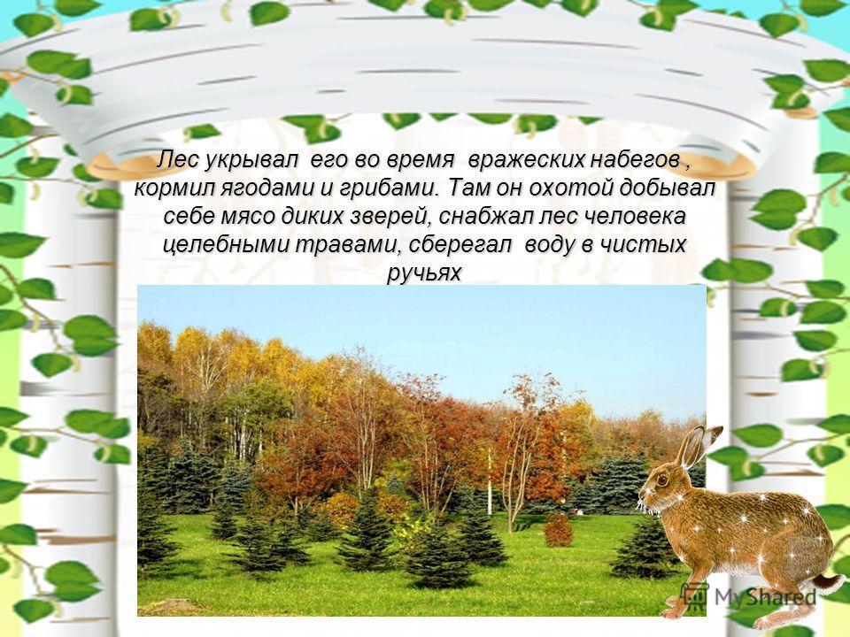 Лес укрывал его во время вражеских набегов, кормил ягодами и грибами. Там он охотой добывал себе мясо диких зверей, снабжал лес человека целебными травами, сберегал воду в чистых ручьях