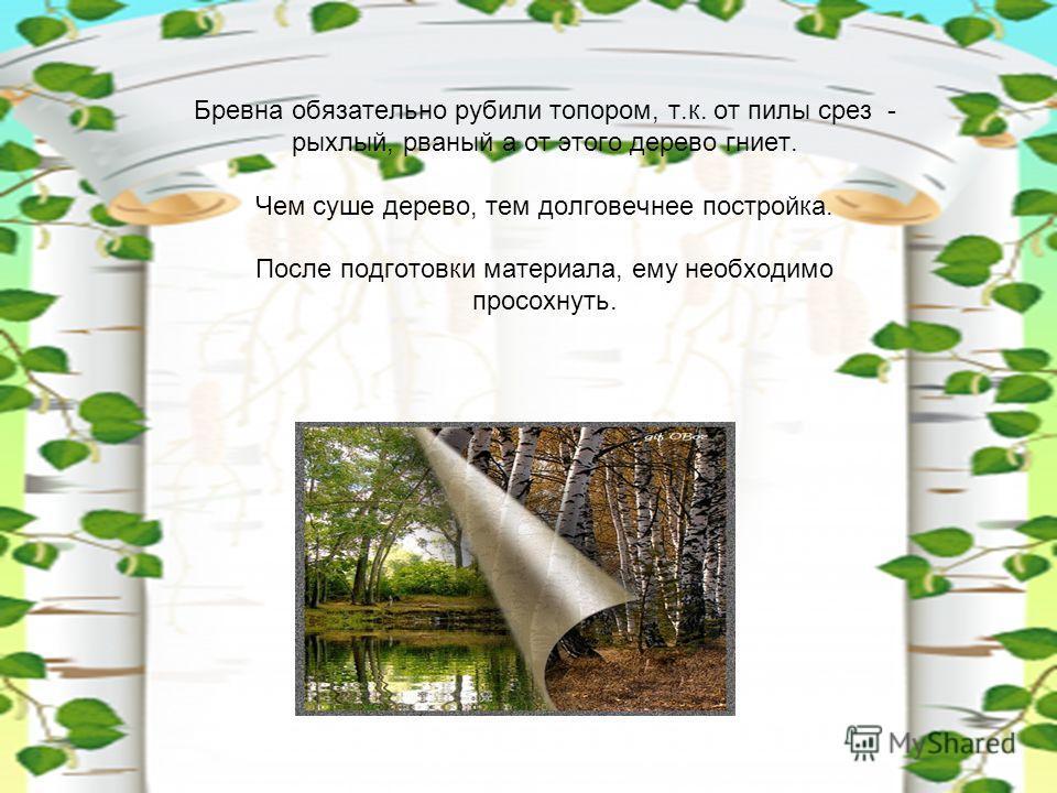 Бревна обязательно рубили топором, т.к. от пилы срез - рыхлый, рваный а от этого дерево гниет. Чем суше дерево, тем долговечнее постройка. После подготовки материала, ему необходимо просохнуть.