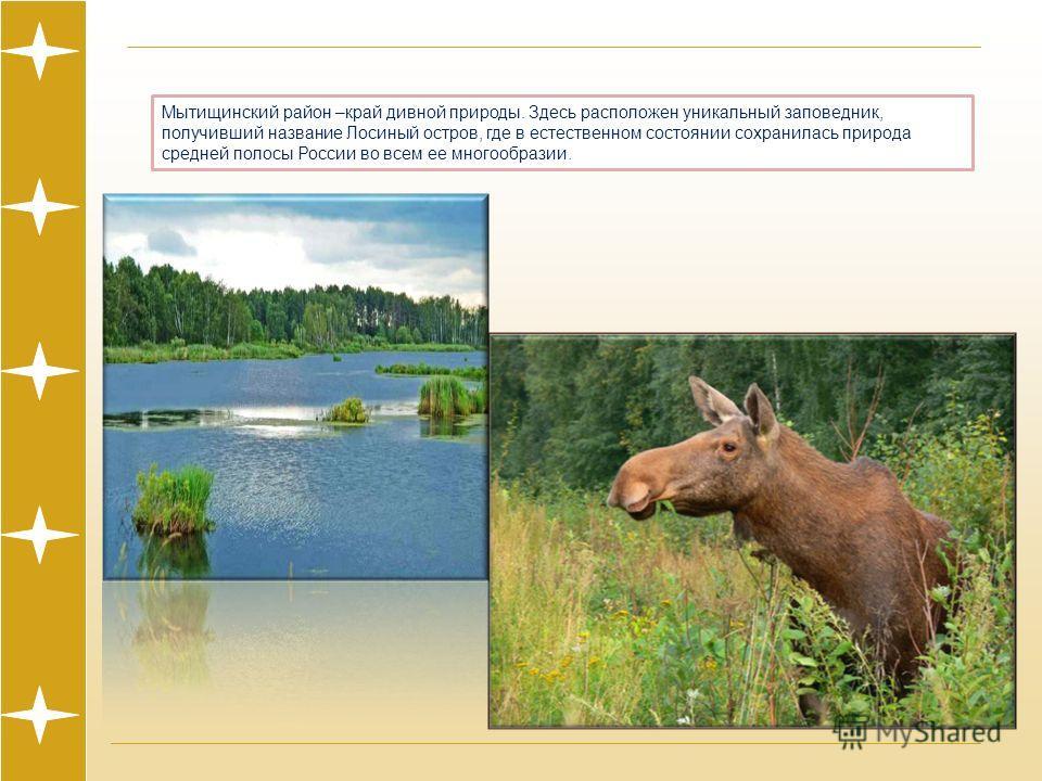Мытищинский район –край дивной природы. Здесь расположен уникальный заповедник, получивший название Лосиный остров, где в естественном состоянии сохранилась природа средней полосы России во всем ее многообразии.