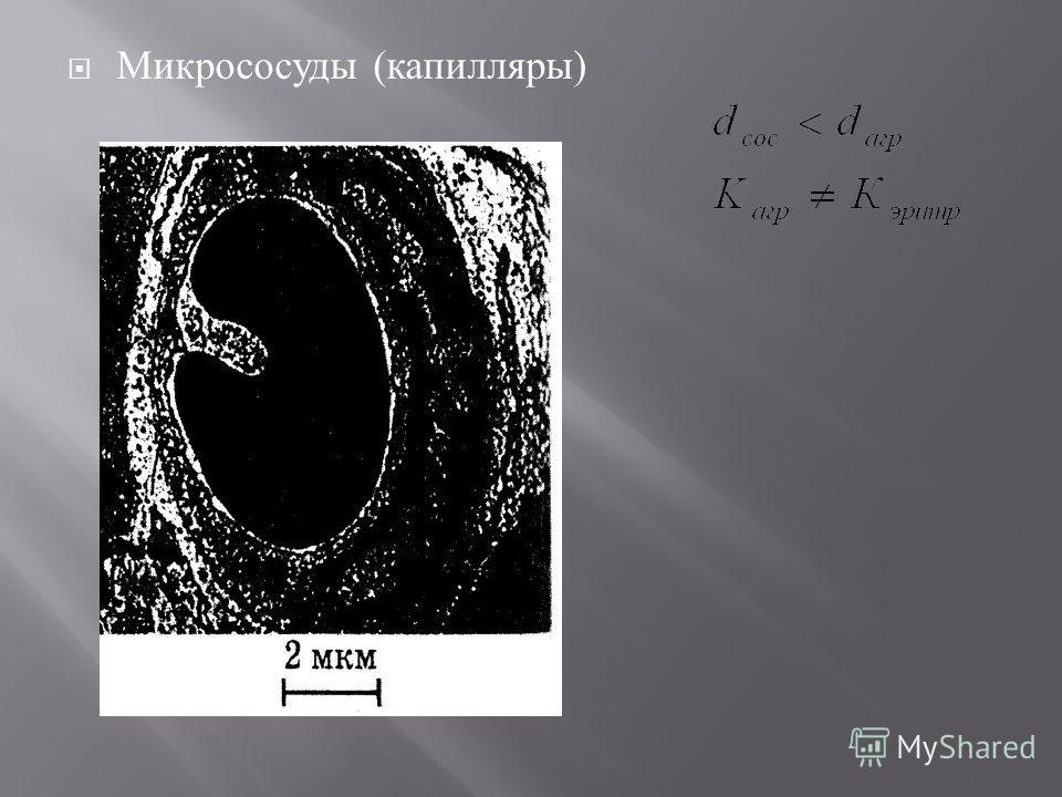 Микрососуды ( капилляры )