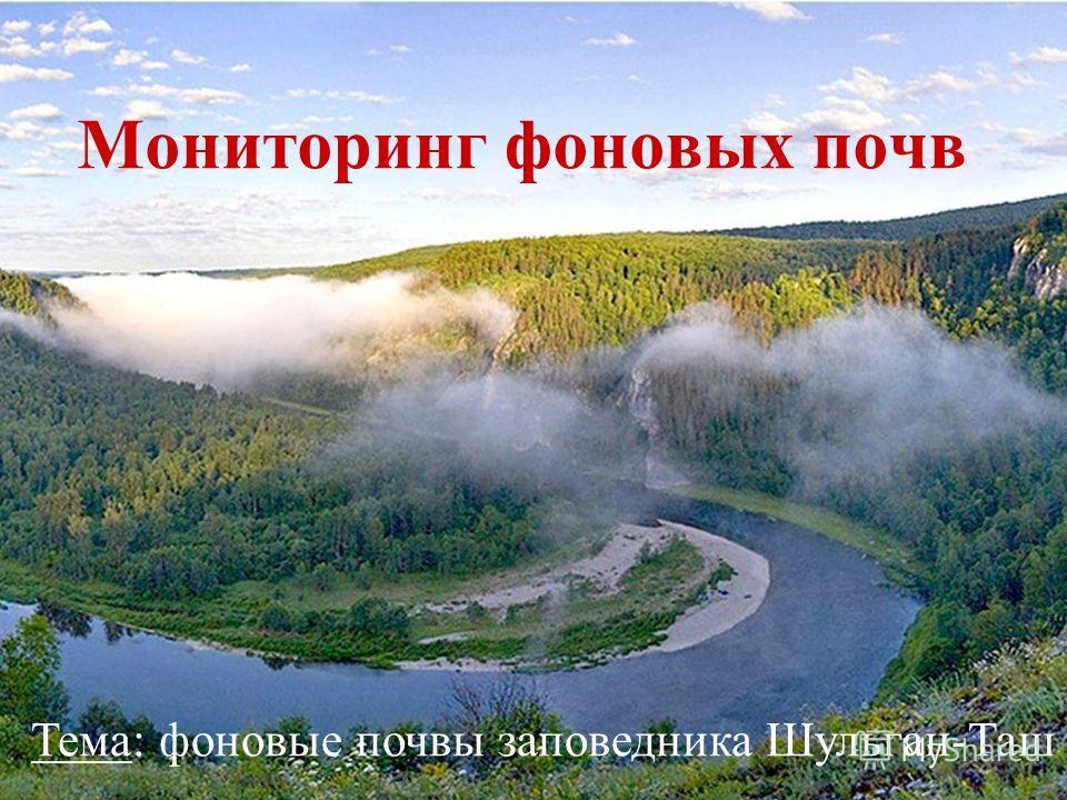 Мониторинг фоновых почв Тема: фоновые почвы заповедника Шульган-Таш