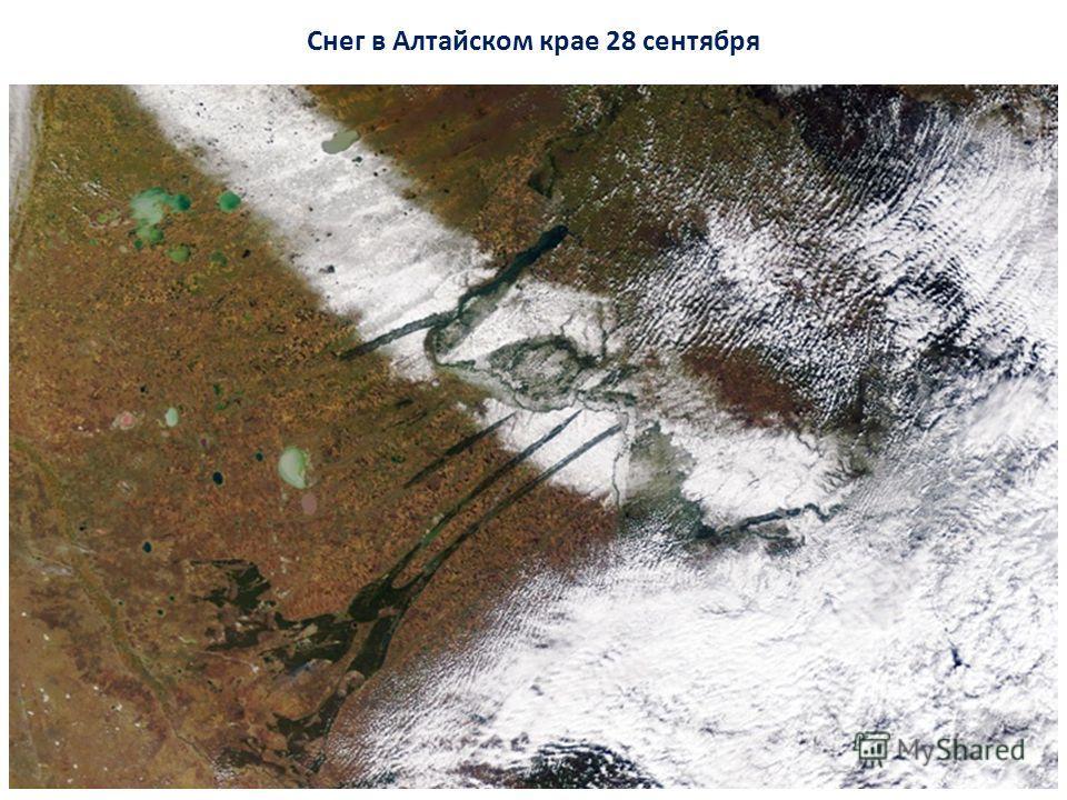 Снег в Алтайском крае 28 сентября