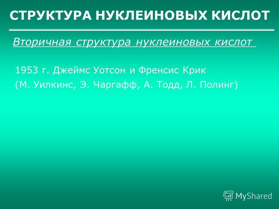 СТРУКТУРА НУКЛЕИНОВЫХ КИСЛОТ Вторичная структура нуклеиновых кислот 1953 г. Джеймс Уотсон и Френсис Крик (М. Уилкинс, Э. Чаргафф, А. Тодд, Л. Полинг)