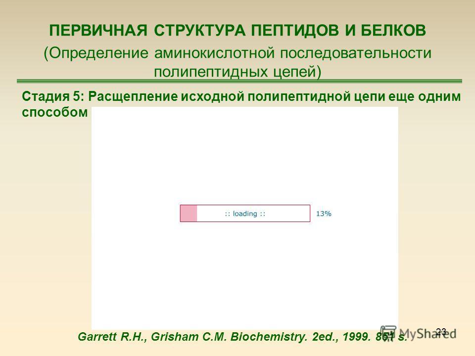 23 ПЕРВИЧНАЯ СТРУКТУРА ПЕПТИДОВ И БЕЛКОВ (Определение аминокислотной последовательности полипептидных цепей) Стадия 5: Расщепление исходной полипептидной цепи еще одним способом Garrett R.H., Grisham C.M. Biochemistry. 2ed., 1999. 851 s.