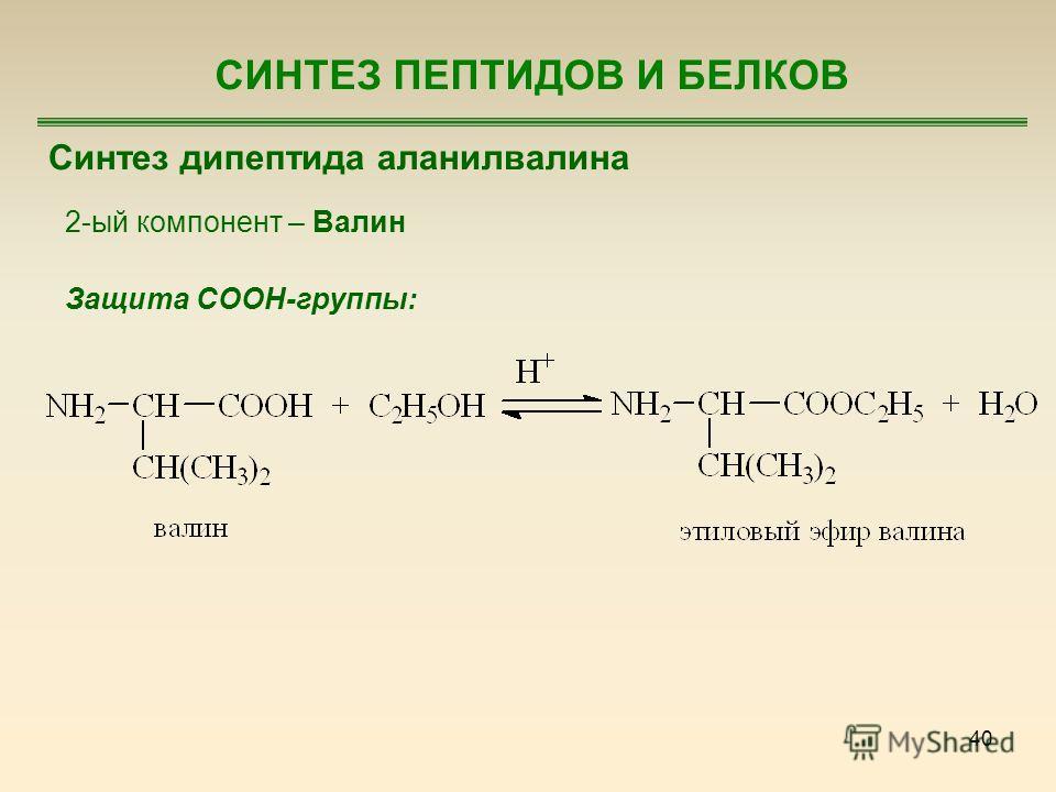 40 СИНТЕЗ ПЕПТИДОВ И БЕЛКОВ Синтез дипептида аланилвалина 2-ый компонент – Валин Защита COOH-группы: