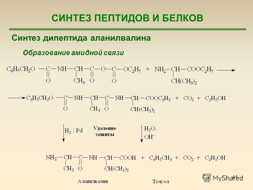 41 СИНТЕЗ ПЕПТИДОВ И БЕЛКОВ Синтез дипептида аланилвалина Образование амидной связи