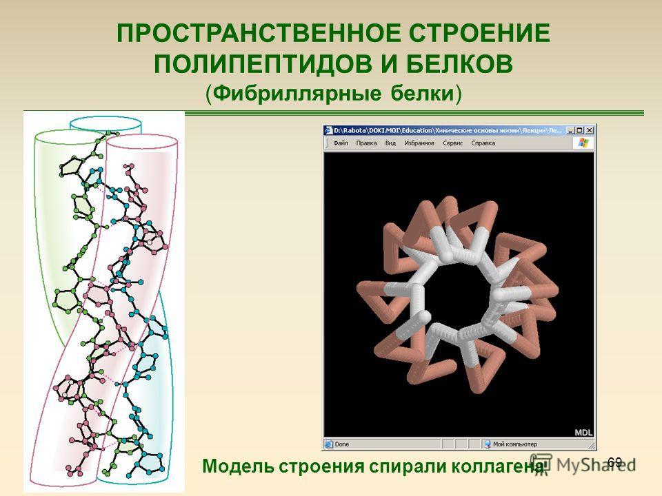 69 ПРОСТРАНСТВЕННОЕ СТРОЕНИЕ ПОЛИПЕПТИДОВ И БЕЛКОВ (Фибриллярные белки) Модель строения спирали коллагена