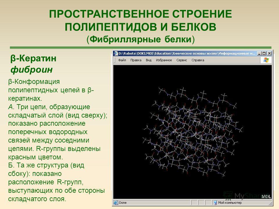 74 ПРОСТРАНСТВЕННОЕ СТРОЕНИЕ ПОЛИПЕПТИДОВ И БЕЛКОВ (Фибриллярные белки) β-Кератин фиброин β-Конформация полипептидных цепей в β- кератинах. А. Три цепи, образующие складчатый слой (вид сверху); показано расположение поперечных водородных связей между