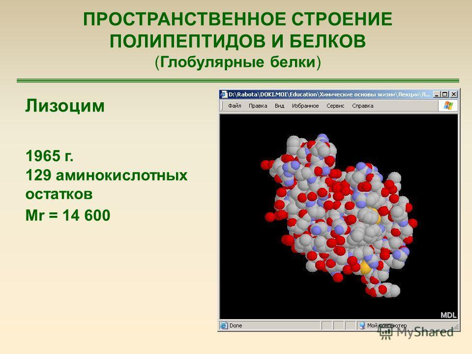 77 ПРОСТРАНСТВЕННОЕ СТРОЕНИЕ ПОЛИПЕПТИДОВ И БЕЛКОВ (Глобулярные белки) Лизоцим 1965 г. 129 аминокислотных остатков Mr = 14 600