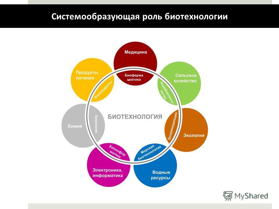 Системообразующая роль биотехнологии