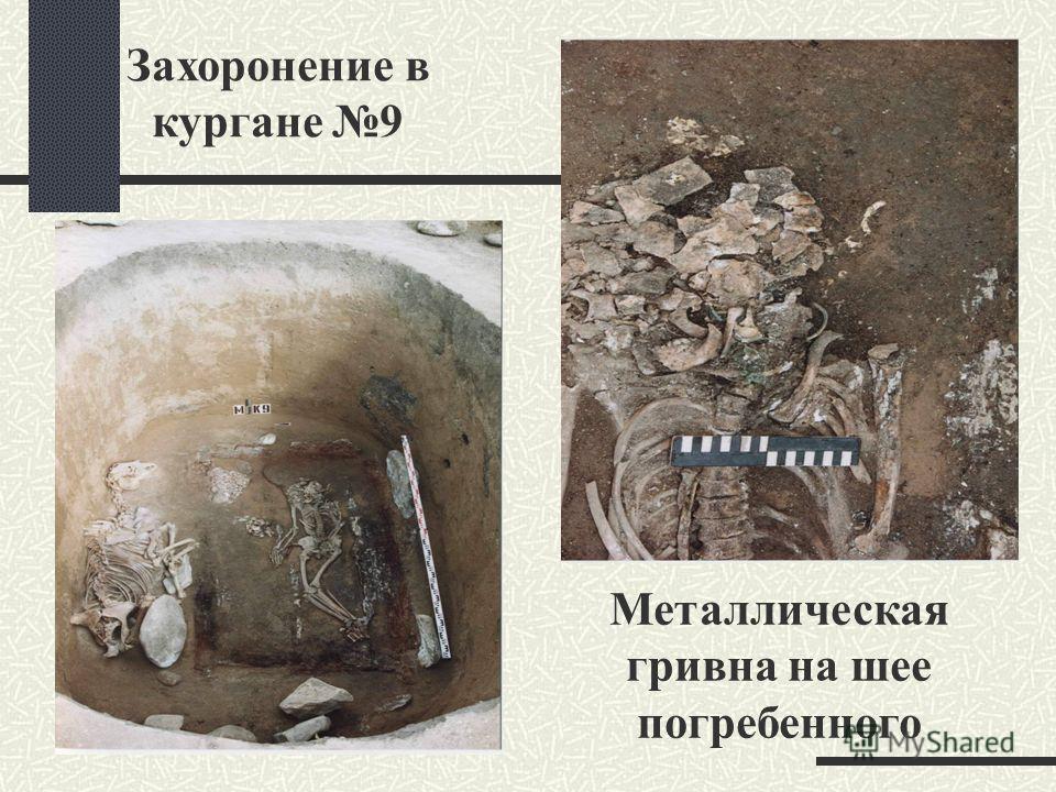 Захоронение в кургане 9 Металлическая гривна на шее погребенного