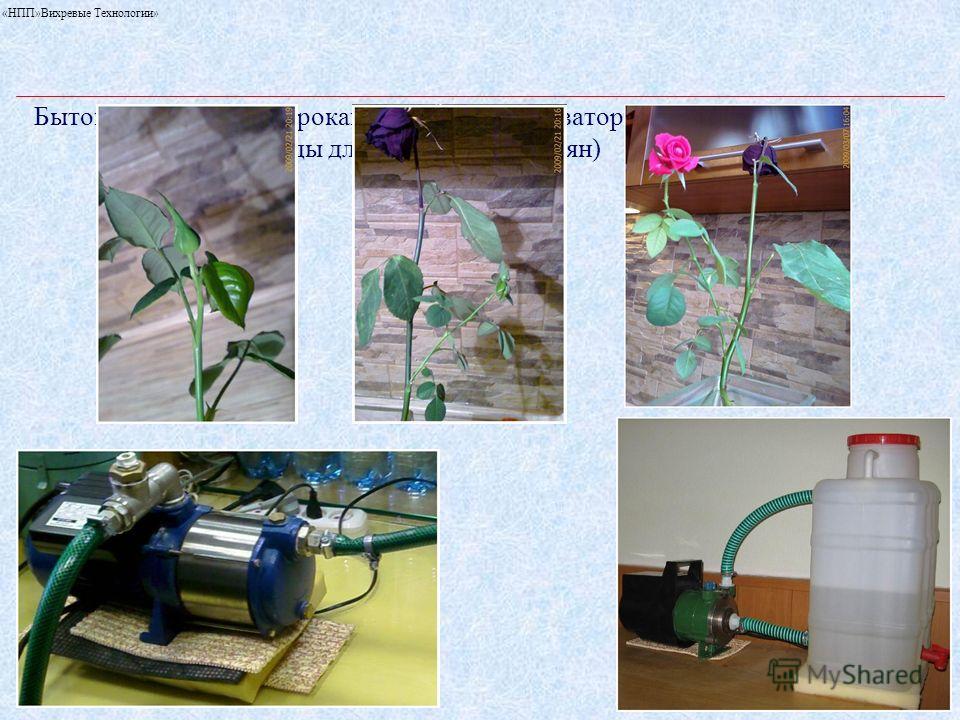 «НПП»Вихревые Технологии» Бытовой роторный гидрокавитационный активатор воды (подготовка воды для замачивания семян)