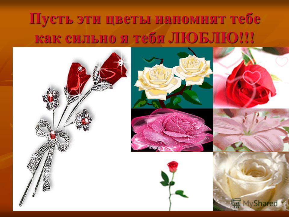 Пусть эти цветы напомнят тебе как сильно я тебя ЛЮБЛЮ!!!