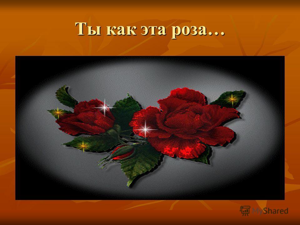 Ты как эта роза…