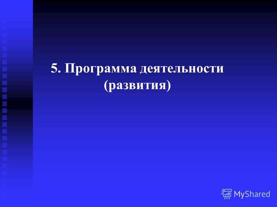 5. Программа деятельности (развития)
