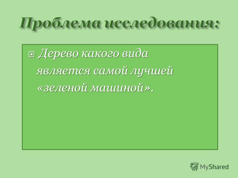 Дерево какого вида Дерево какого вида является самой лучшей является самой лучшей «зеленой машиной». «зеленой машиной».