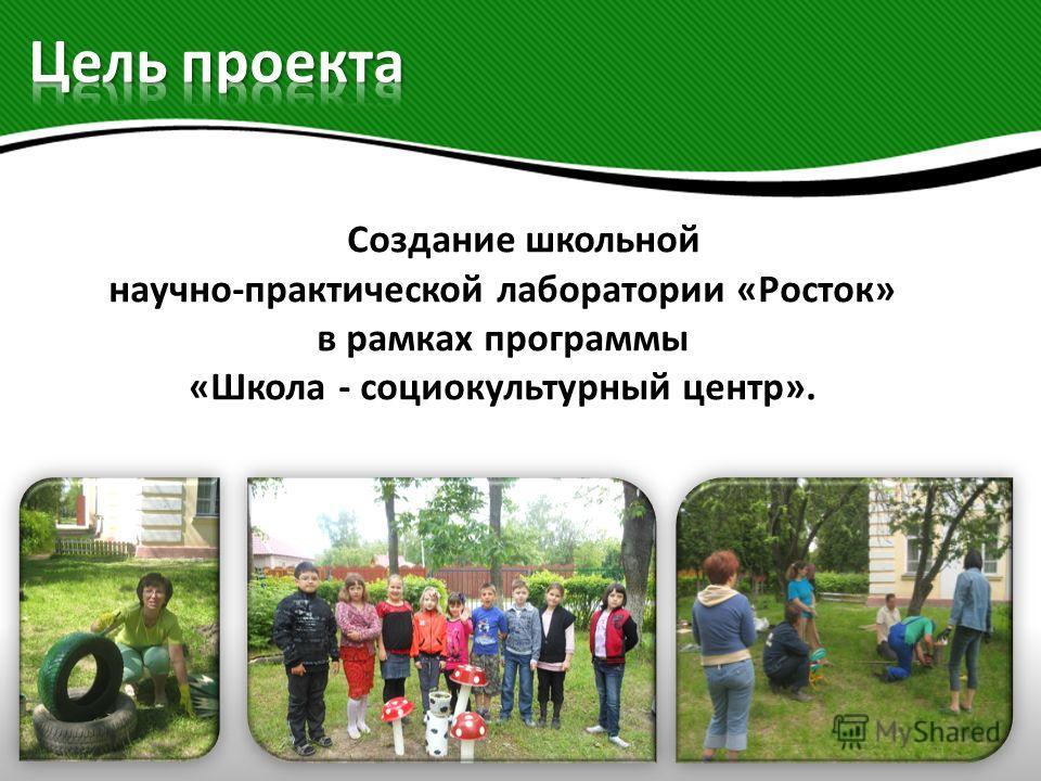 Создание школьной научно-практической лаборатории «Росток» в рамках программы «Школа - социокультурный центр».