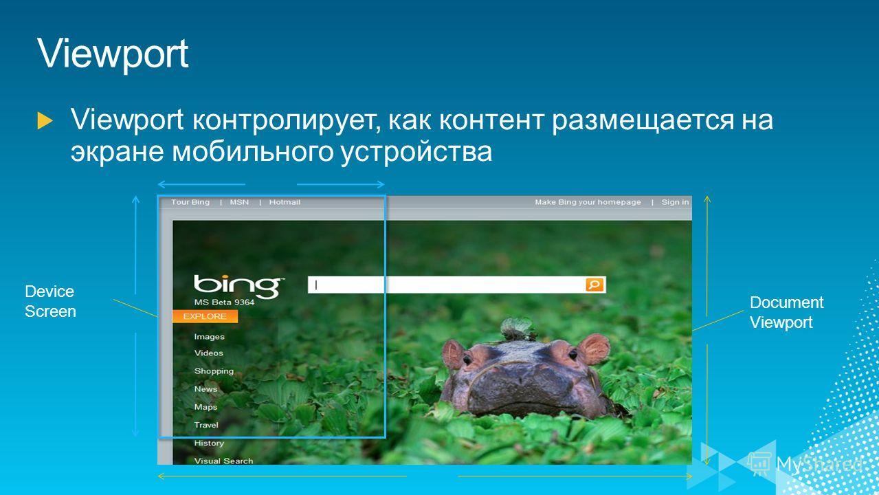 Device Screen Document Viewport