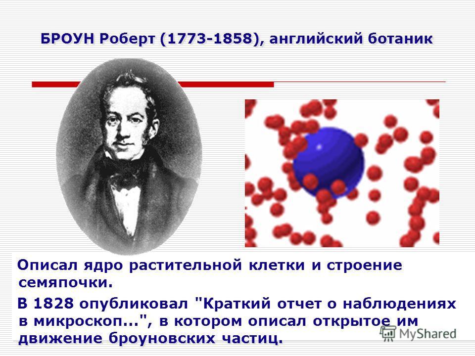 БРОУН Роберт (1773-1858), английский ботаник Описал ядро растительной клетки и строение семяпочки. В 1828 опубликовал
