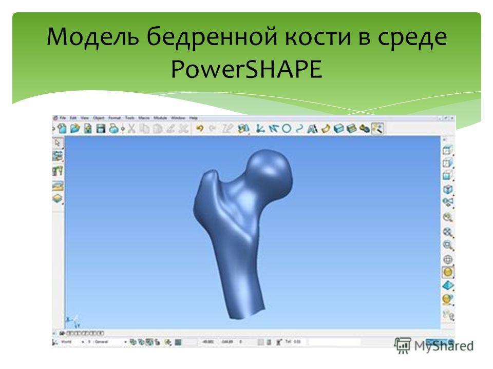Модель бедренной кости в среде PowerSHAPE